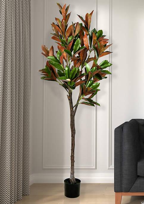 Vickerman Green Magnolia Tree in Black Planters Pot