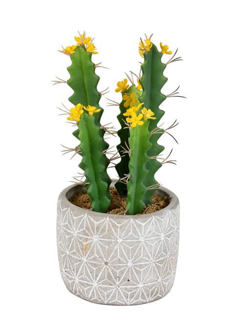 Vickerman Green Cactus in Cement Pot