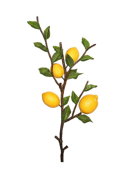 Vickerman Green and Yellow Lemon Spray