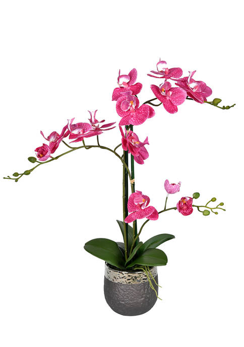 Vickerman Potted Real Touch Mauve Phalaenopsis Spray