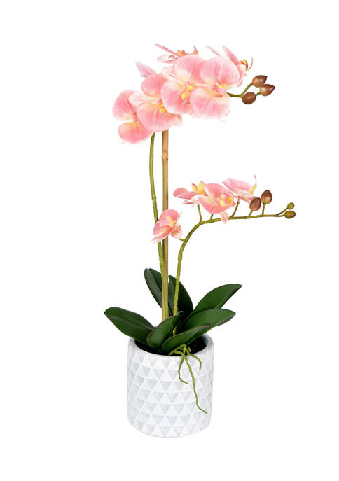Potted Real Touch Pink Phalaenopsis Spray