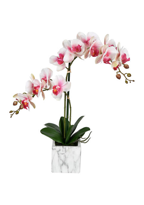 Vickerman Potted Real Touch Phalaenopsis Spray