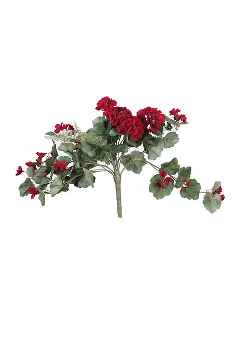 Red Geranium Hanging Bush