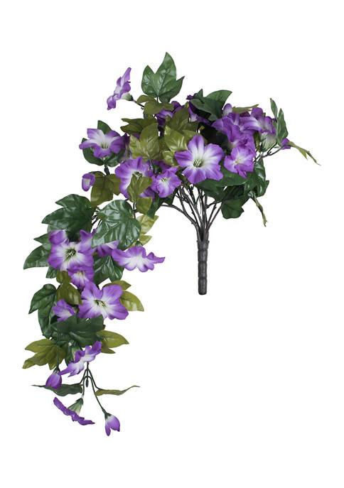 Vickerman Purple Petunia Bush