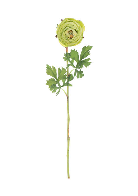 Green Ranunculus Stem - Set of 4