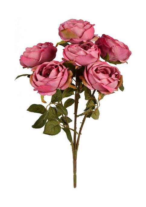 Vickerman Mauve Rose Bush