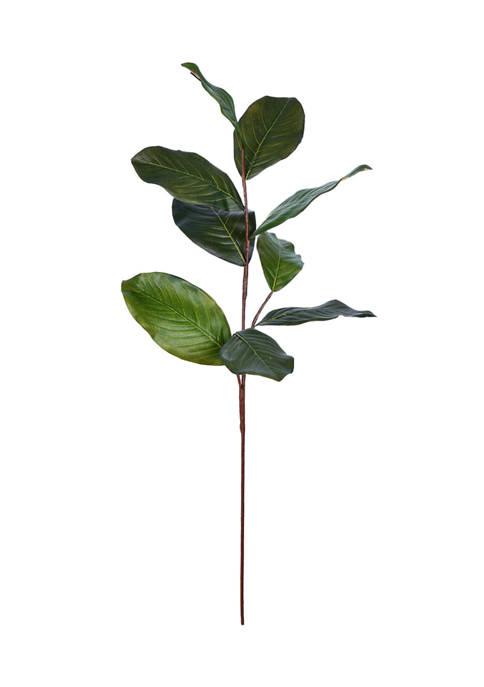 Vickerman Green Magnolia Spray