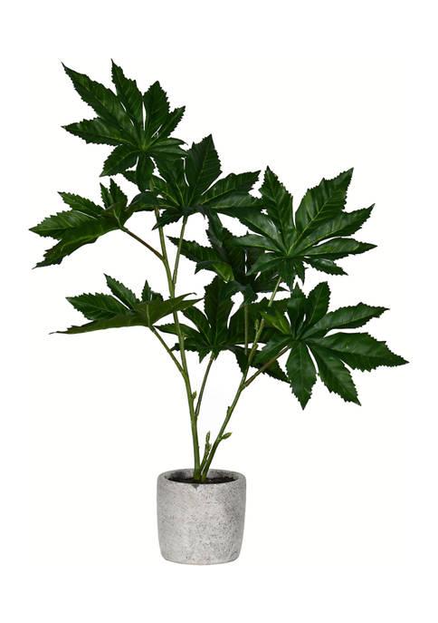 Vickerman Green Potted Papaya