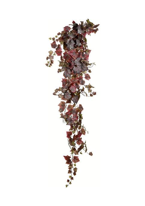 Burgundy Grape Leaf Ivy Hanging Bush