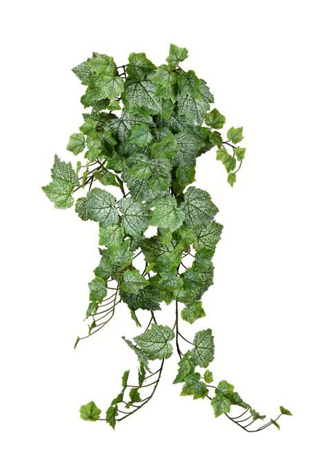 Vickerman Grape Leaf Ivy Hanging Bush