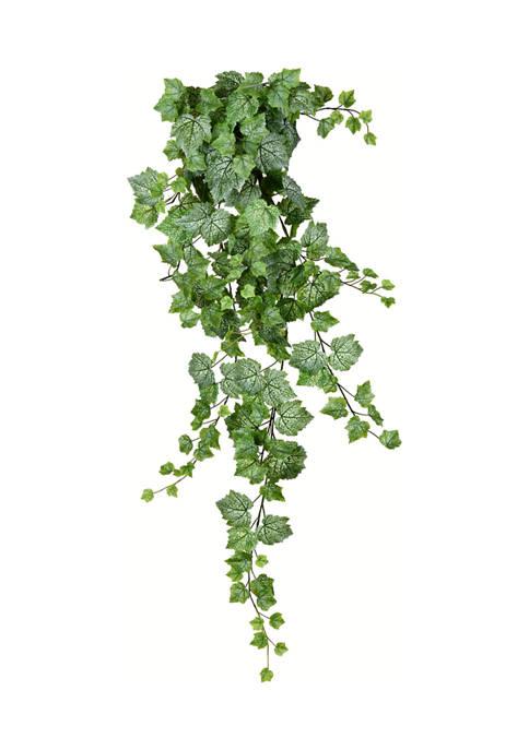 Vickerman Green & White Grape Leaf Ivy Hanging