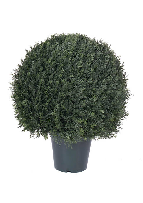 UV Resistant Pond Cypress Topiary in Two Tone Green Pot