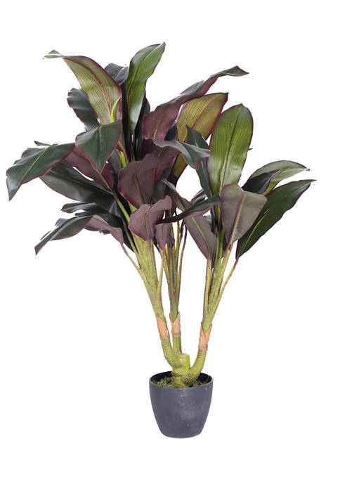 Real Touch Dracaena