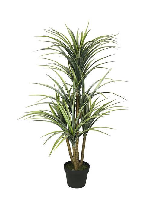 Vickerman Green Yucca