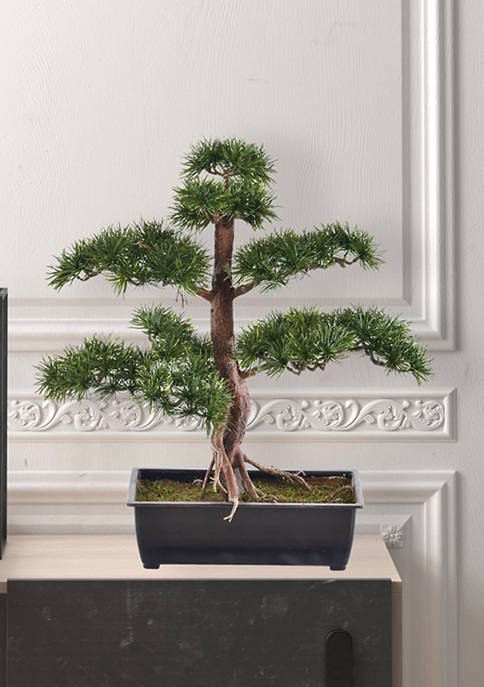 Vickerman Potted Guest Greeting Pine Tree