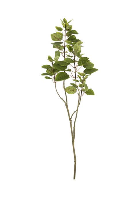 Vickerman Green Cotinus Coggygria Tree