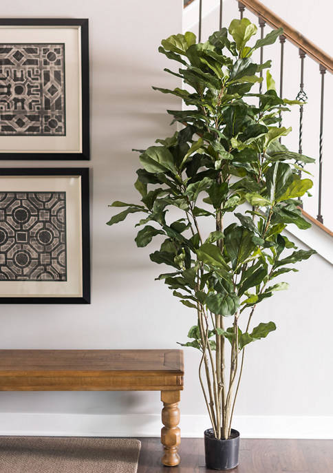 Vickerman Green Potted Fiddle Tree