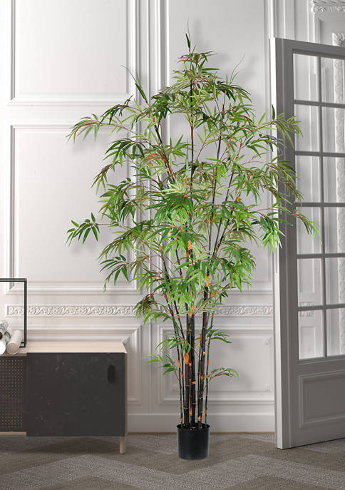 Vickerman Potted Black Japanese Bamboo Tree