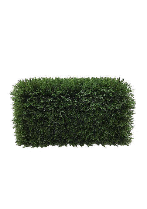 Green Cedar Hedge
