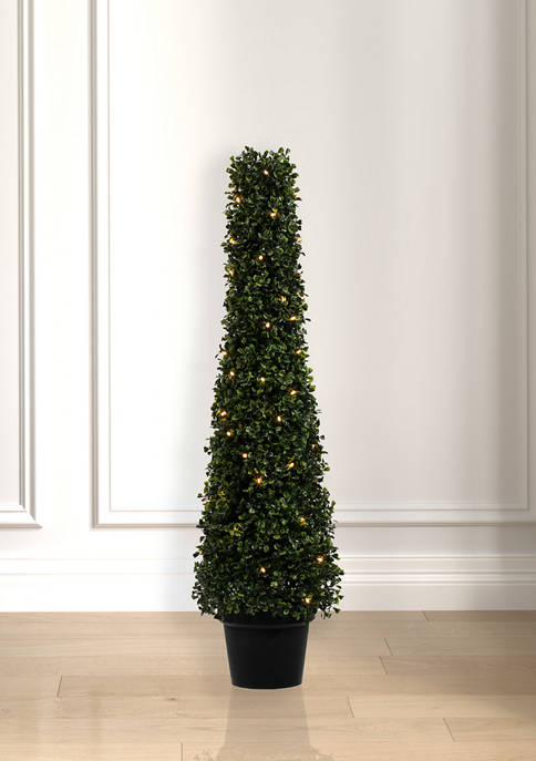 Potted Boxwood Cone with 70 Warm White LED Lights