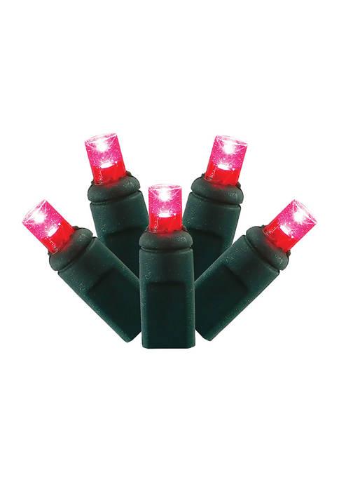 Vickerman LED Light Set