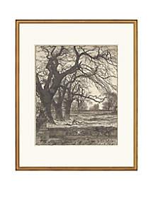 Allee of Oaks Archival Framed Art Print