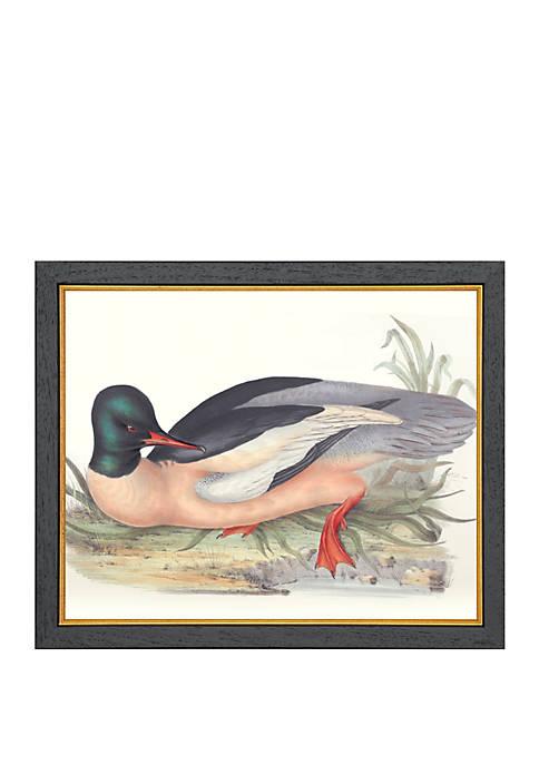 Biltmore® Common Mersanger Archival Framed Art Print