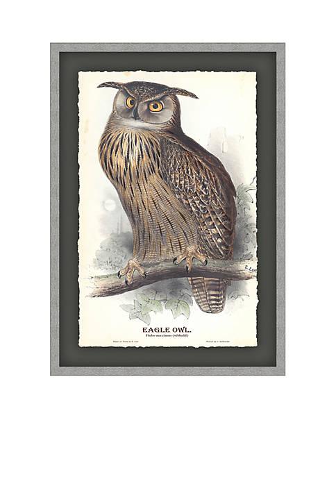 Eagle Owl Archival Framed Art Print