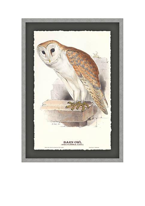 Biltmore® Barn Owl Archival Framed Art Print