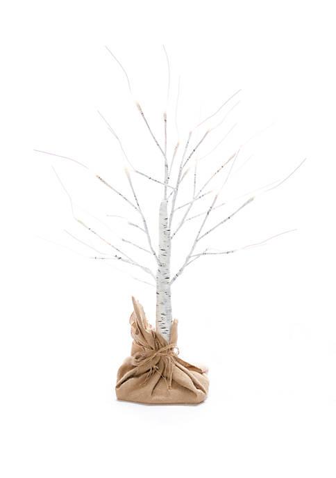 Joyland 24 in Birch Tree