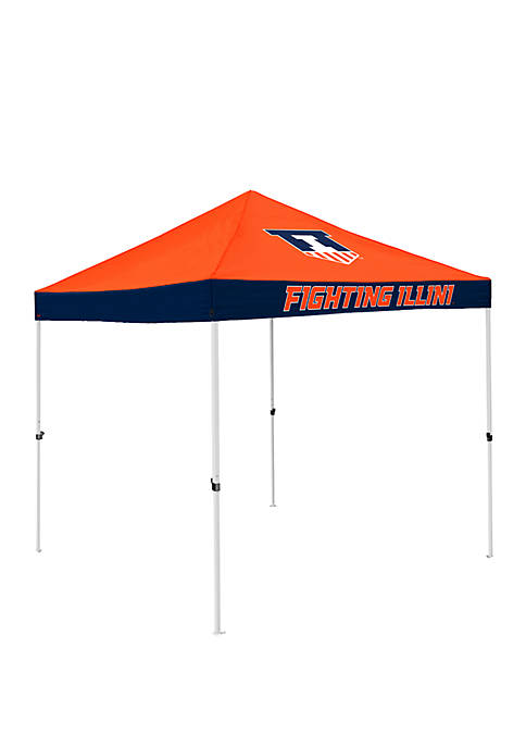 Logo NCAA Illinois Fighting Illini 9 ft x