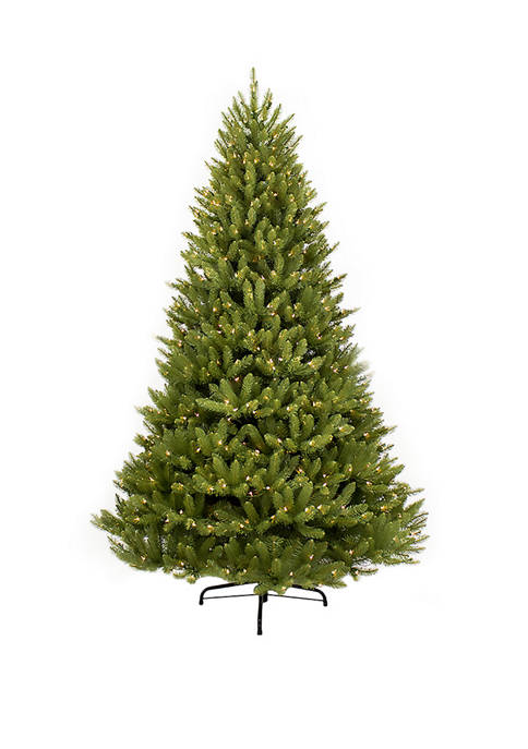 Puleo International 10 Foot Pre Lit Franklin Fir