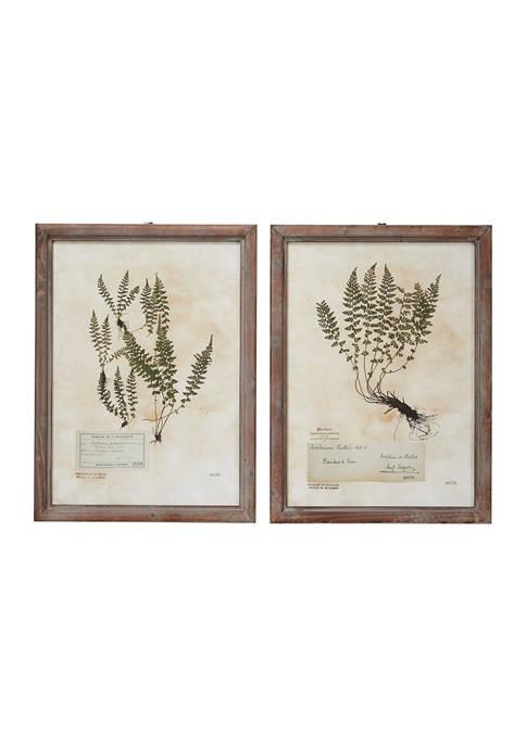 Monroe Lane Large, Rectangular French Vintage Botanical Prints