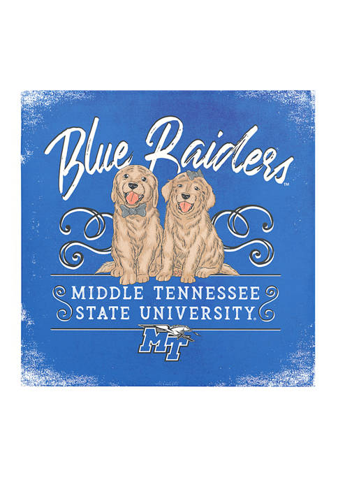 Image One NCAA Middle Tennessee Blue Raiders 9x9