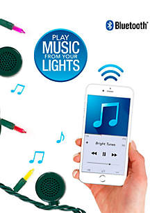 Indoor/Outdoor 5 Color Multi-Colored Incandescent String Lights with Bluetooth Speakers
