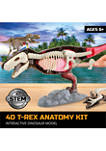 4D T-Rex Dinosaur Anatomy Kit