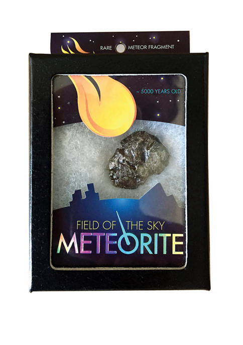Copernicus Field of the Sky Meteorite Toy