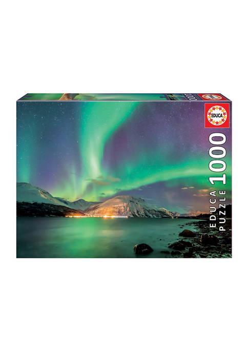 Educa Aurora Borealis: 1000 Piece Puzzle