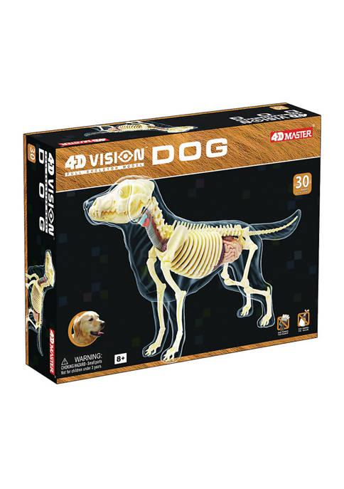 4D Master 4D Vision Full Skeleton Dog Model