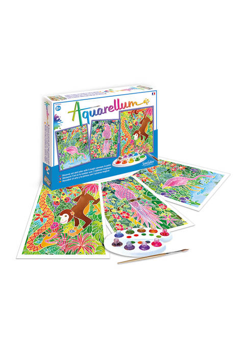Aquarellum Large Craft Kit - Amazon