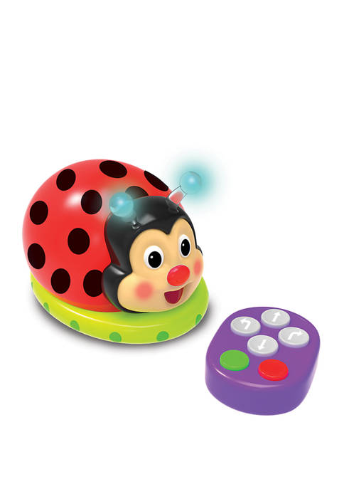 Learning Journey International Code and Learn! Ladybug