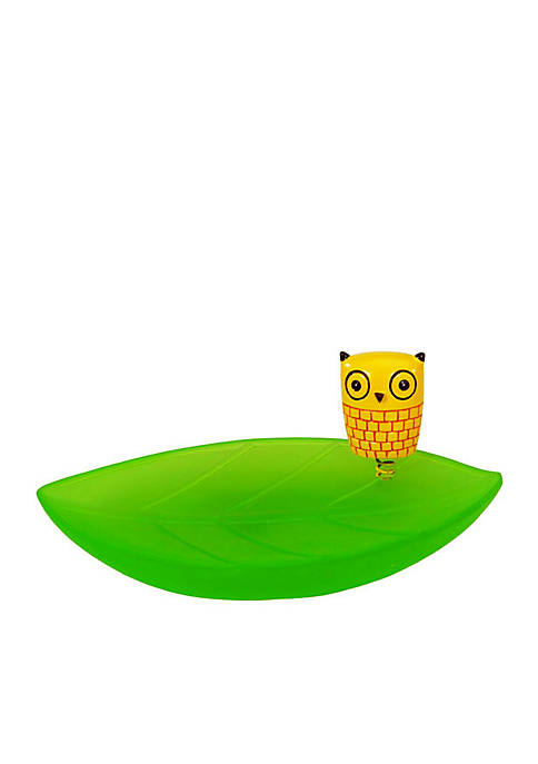 Give a Hoot Soap Dish