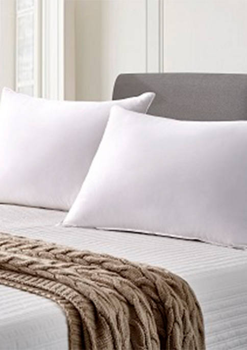 Cannon Set of 2 330 Thread Count Back