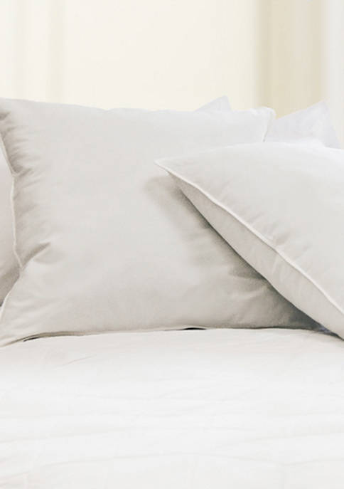 Blue Ridge Home Fashions Feather Euro Square Pillow