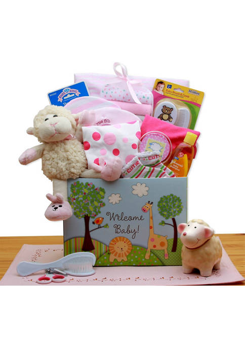 GBDS Welcome New Baby Gift Box