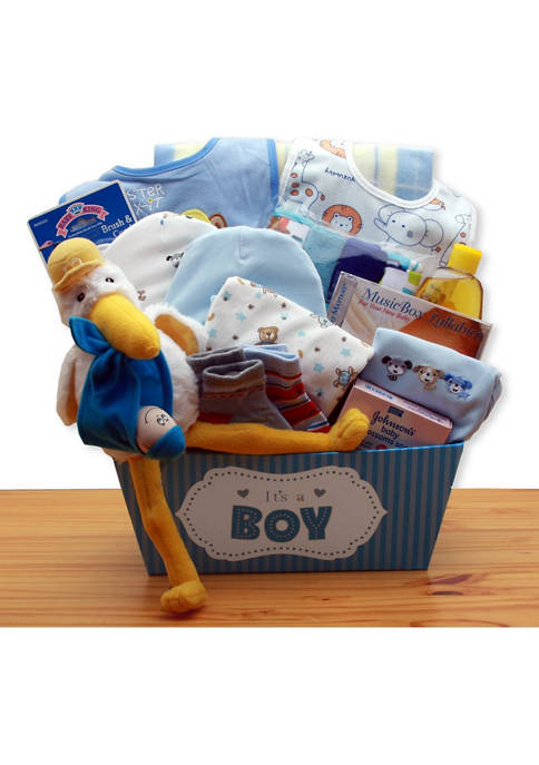 GBDS A Special Delivery New Baby Gift Basket