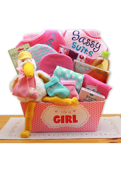 GBDS A Special Delivery New Baby Gift Basket-