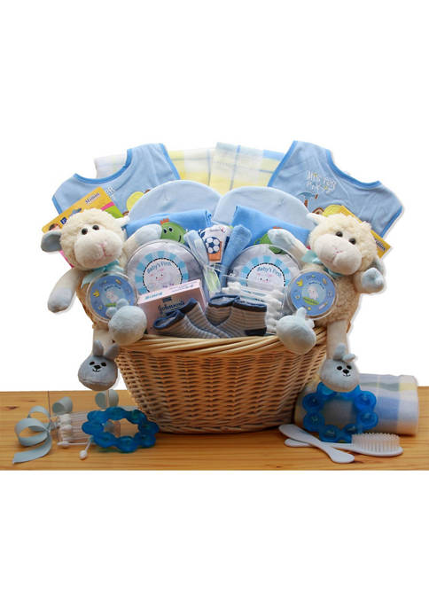 GBDS Double Delight Twins New Baby Gift Basket